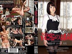 Fujiwara Hitomi in Hitomi Fujiwara Of Torture Trio Shinso
